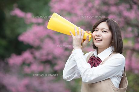 メガホンを持った女子学生の写真素材 [FYI01181423]