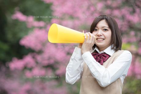メガホンを持った女子学生の写真素材 [FYI01181425]