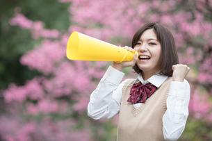 メガホンを持った女子学生の写真素材 [FYI01181426]