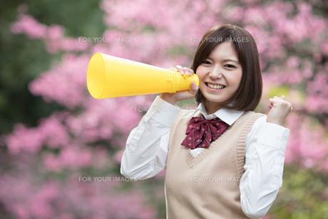 メガホンを持った女子学生の写真素材 [FYI01181431]