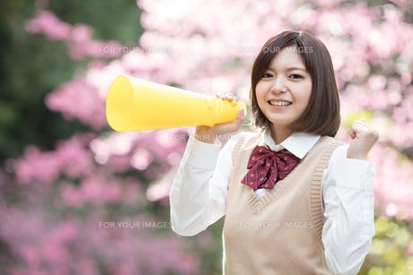 メガホンを持った女子学生の写真素材 [FYI01181433]