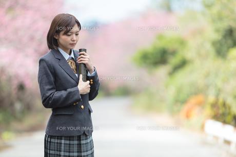 桜と証書筒を持った女学生の写真素材 [FYI01181587]