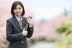 桜と証書筒を持った女学生の写真素材 [FYI01181592]