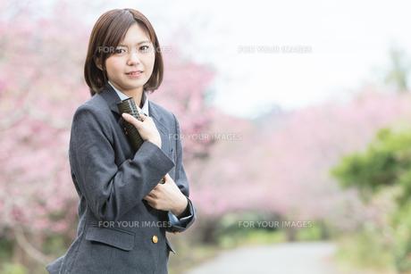 桜と証書筒を持った女学生の写真素材 [FYI01181597]