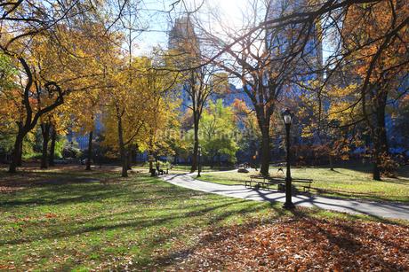 ニューヨーク セントラルパーク 秋の朝の写真素材 [FYI01181931]