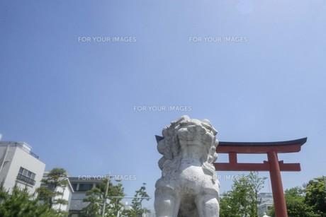 鎌倉の風景の写真素材 [FYI01181952]