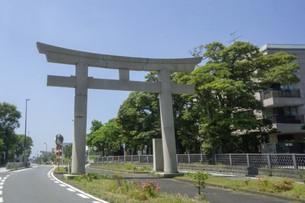 鎌倉八幡宮への道の写真素材 [FYI01181953]