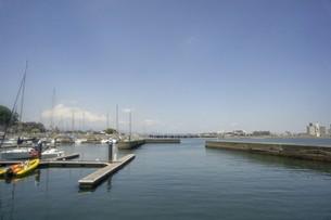 江の島ヨットハーバーの写真素材 [FYI01181959]