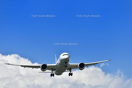 着陸態勢の旅客機の写真素材 [FYI01182007]