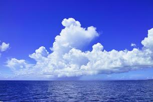 夏雲と海の写真素材 [FYI01182028]