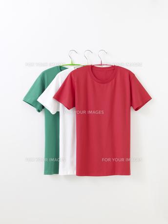 Tシャツの写真素材 [FYI01182583]