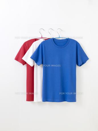 Tシャツの写真素材 [FYI01182584]