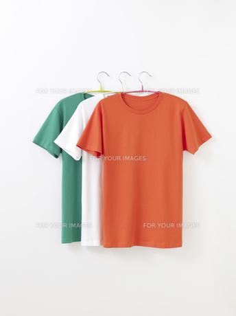 Tシャツの写真素材 [FYI01182585]