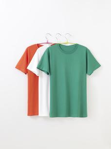 Tシャツの写真素材 [FYI01182586]