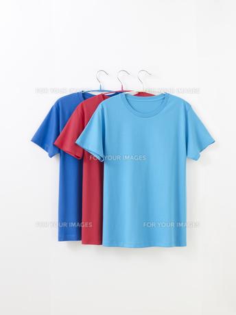 Tシャツの写真素材 [FYI01182587]