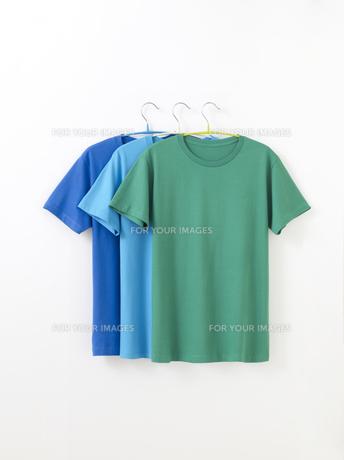 Tシャツの写真素材 [FYI01182588]