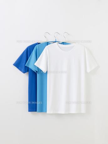 Tシャツの写真素材 [FYI01182589]