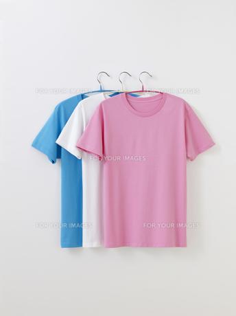 Tシャツの写真素材 [FYI01182590]