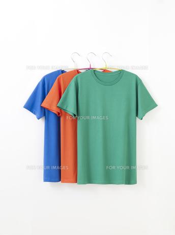 Tシャツの写真素材 [FYI01182591]