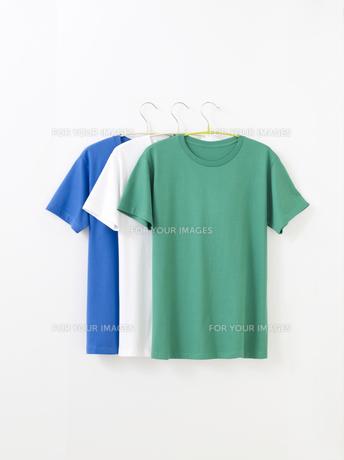Tシャツの写真素材 [FYI01182592]