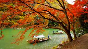嵯峨野嵐山の紅葉と舟下りの写真素材 [FYI01182639]
