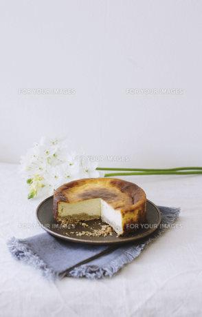 ベイクドチーズケーキの写真素材 [FYI01182853]