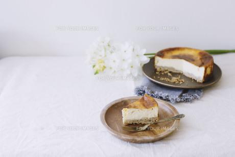 ベイクドチーズケーキの写真素材 [FYI01182856]