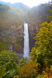 紅葉の華厳の滝 近影の写真素材 [FYI01182952]