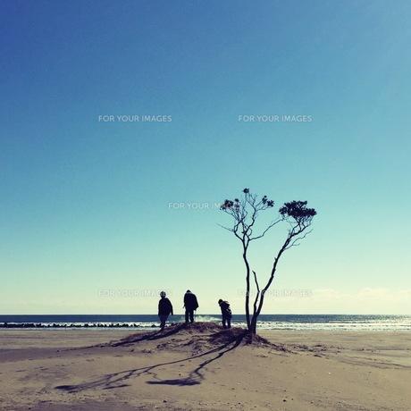 子供と海の写真素材 [FYI01183113]