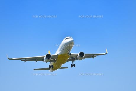 着陸態勢の旅客機の写真素材 [FYI01183211]