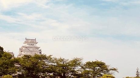 姫路城の写真素材 [FYI01183269]