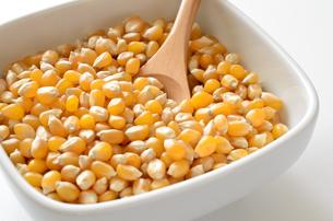 ポップコーン原料豆の写真素材 [FYI01183281]