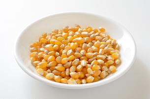 ポップコーン原料豆の写真素材 [FYI01183284]