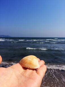 海で拾った貝殻を青い海の写真素材 [FYI01183438]