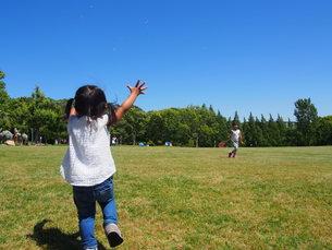 晴れた日に芝生の広場でシャボン玉をして遊ぶ子供の写真素材 [FYI01183450]