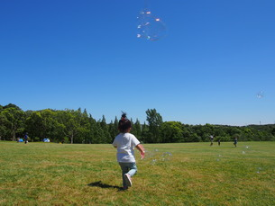 晴れた日に芝生の広場でシャボン玉をして遊ぶ子供の写真素材 [FYI01183452]