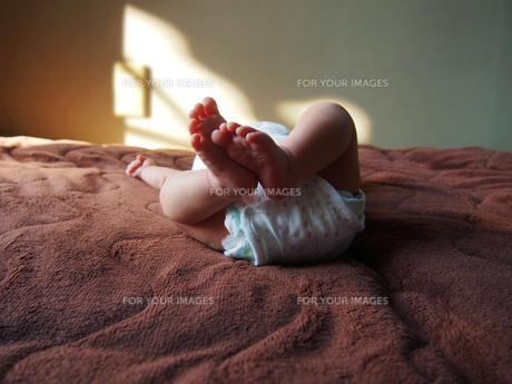 西陽の差し込む部屋で眠る赤ちゃんの写真素材 [FYI01183465]