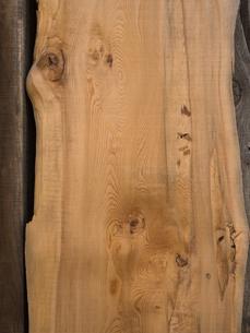 木材の断面の写真素材 [FYI01183856]