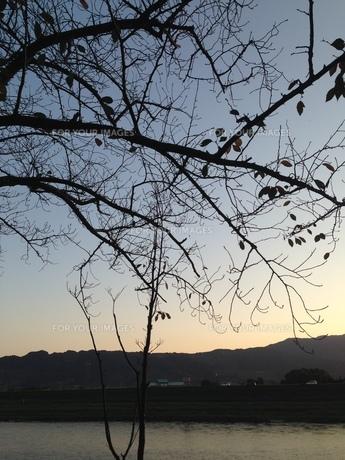 夕日の写真素材 [FYI01184152]