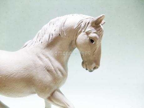 白馬の置き物の写真素材 [FYI01184260]