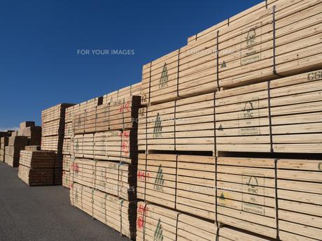 積み上げられた材木の写真素材 [FYI01184368]