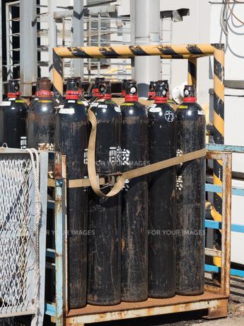 活魚用の酸素ボンベの写真素材 [FYI01184581]