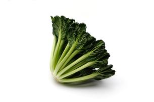 タアサイ 中国野菜の写真素材 [FYI01184689]