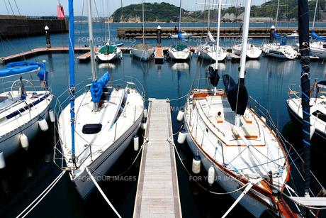 ヨットハーバーの桟橋に係留された白いヨットが水面に映える夏の景色の写真素材 [FYI01184927]