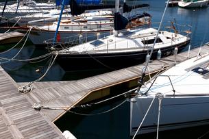 ヨットハーバーの桟橋に係留された白いヨットが水面に映える夏の景色の写真素材 [FYI01184929]