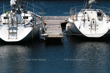 ヨットハーバーの桟橋に係留された白いヨットが水面に映える夏の景色の写真素材 [FYI01184931]