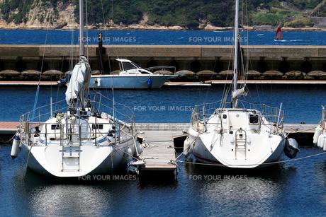 ヨットハーバーの桟橋に係留された白いヨットが水面に映える夏の景色の写真素材 [FYI01184932]