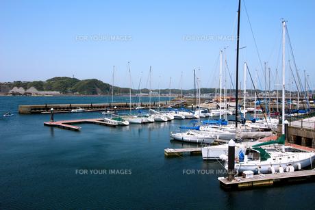 夏の穏やかな海に臨むヨットハーバーの風景の写真素材 [FYI01184933]