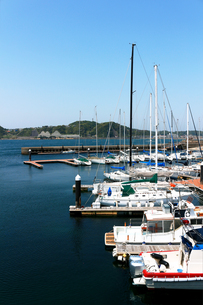 夏の穏やかな海に臨むヨットハーバーの風景の写真素材 [FYI01184934]