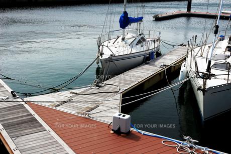 ヨットハーバーの桟橋に係留された白いヨットが水面に映える夏の景色の写真素材 [FYI01184935]